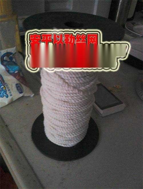 聚四 乙烯纖維繩以勒製品價格如何?
