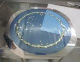 厂家直销 6寸晶圆铁圈wafer frame 不锈铁粘性好晶圆贴片环批发