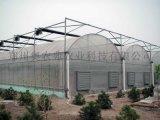智慧連棟薄膜溫室大棚/提供連棟薄膜溫室大棚設計安裝