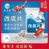 臭氧片水產養殖底改片 第五代活性氧水質改善劑