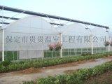 【贵贵温室】温室大棚设计建造与施工