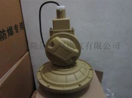 SBD1106—YQL65B免维护节能防爆灯