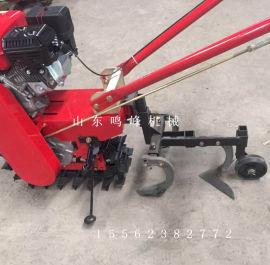 秧苗垄间管理除草机,小型履带式手扶除草机