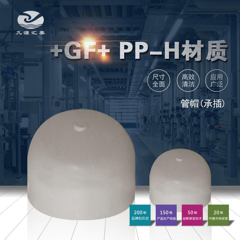 +GF+ PPH管帽封头承插焊 工业管道阀门系统