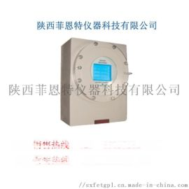 FN311C 防爆 氧分析仪