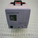 LB-6120(AD)双路综合大气采样器-路博自产