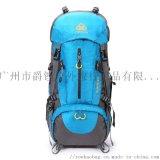 廣州工廠定製貼牌戶外耐磨雙肩包運動登山包戶外裝備