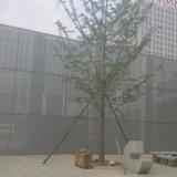 鋁板裝飾網 室外金屬幕牆 河北幕牆裝飾網