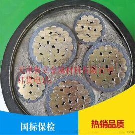 k铠装电缆用镀锌钢带 厂家   0.9*32mm