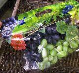 东莞厂家定做打孔水果袋,水果保鲜袋,自封口水果自立保鲜袋,葡萄打孔水果包装袋现货定做印刷