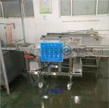 蝦製品裹漿掛糊機 山東有爲機械上漿裹粉機設備