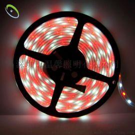 新款 LED灯条 5050LED灯带 防水5050LED灯条 RGBW防水5050LED灯条