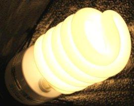 凯丽美3200k 135w摄影专用灯泡节能灯泡批发价格