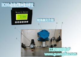GH1620在线式氧中氢分析仪