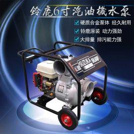 防汛6寸汽油机水泵流量150m3/h铃鹿SHL60QP