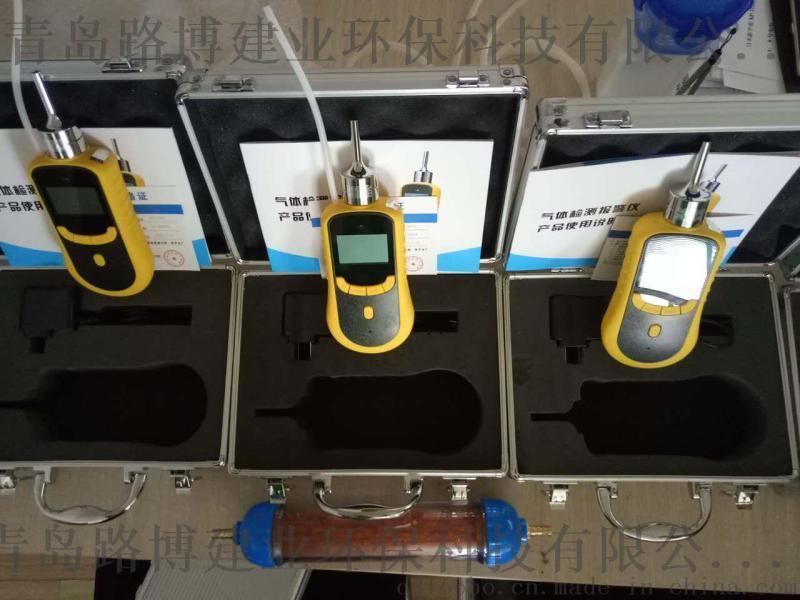 青岛路博LB-BZ泵吸式二氧化碳气体检测仪