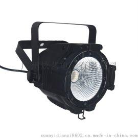 C PAR 50UV 面光灯