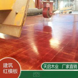 广西建筑模板 防水耐腐蚀多层板 桉木整芯胶合板