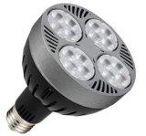 LED PAR30灯头