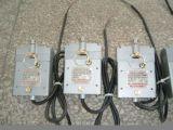供应  DSW型户外电磁锁