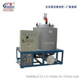 江苏瑞源 三十年品质 厂家直销 节能环保GYZ真空清洗炉