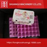 雞蛋托盤機械生產線 紙蛋託生產設備