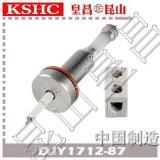 超高纯氧化铝陶瓷水位电极DJY1712-87锅炉汽包水位电极