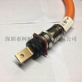 汽车高压线束 250A大电流动力电池充放电连接器