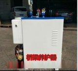 遼寧全自動蒸汽發生器√水利蒸汽養護工程優質服務