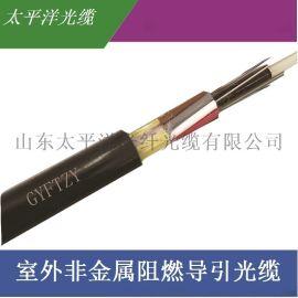 太平洋 室外非金属阻燃光缆GYFTZY-8B1