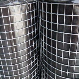 抹墙丝网建筑铁丝网 镀锌电焊网 抹墙焊接网 批荡网 厂家