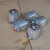 CB-E0.5/1.5-ST雙向齒輪泵