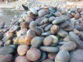 滨海新区直销永顺天然鹅卵石,雨花石,洗米石