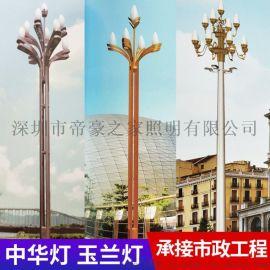 玉兰灯厂家直销景观灯户外 广场工程LED中华灯定制