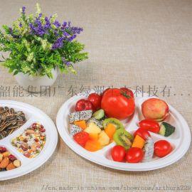 绿洲环保一次性餐盘6寸9寸圆盘纸盘蛋糕盘甘蔗浆竹浆