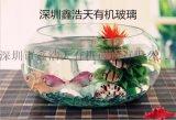 定制透明生态小型迷你小鱼缸亚克力圆形方形室内办公桌鱼缸