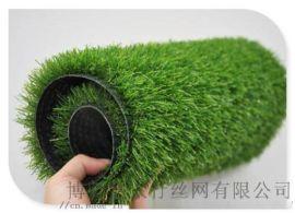 供应**型2.5厘米足球场草坪 工程绿化草坪