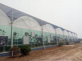 大型智能圆拱形连栋双拱双膜温室-青州泉瑞温室建造