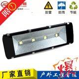 LED投光灯 工矿灯泛光灯路灯投射灯户外室外防水 双芯100W正白