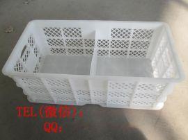 种蛋周转箱 塑料隔板鸡蛋筐 加厚环保耐用塑料筐