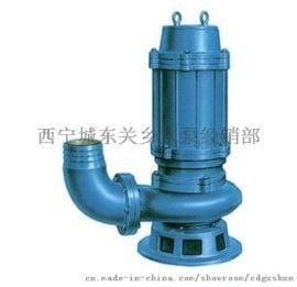 供青海果洛立式污水泵和大通污水泵供应商