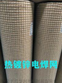安平县抹墙电焊网、改拔丝电焊网、镀锌铁丝网规格齐全