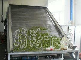 新型DWC系列脱水蔬菜带式干燥机 能源效率高 适合大批量连续生产