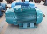 生產廠家直銷YZR系列電動機 佳木斯電動機 起重機電設備 冶金行業用電動機