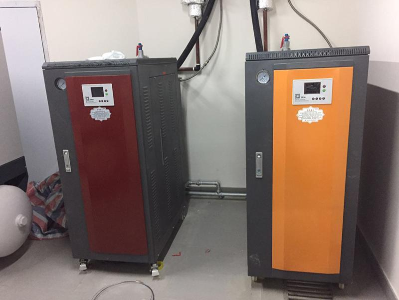 反應釜、發酵罐、夾層鍋配套用蒸汽鍋爐 蒸汽發生器