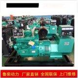 原厂品质潍坊纯铜50KW柴油发电机组低油耗高性能铲车用发动机,柴油发电机组13375369201