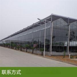 内蒙古玻璃温室大棚每平米造价 智能温室大棚优点
