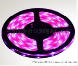 LED软灯条RGB生产厂家