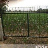 上海专业生产护栏网 公路铁路护栏网
