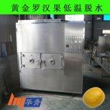 广西微波设备厂家供应桂林永福黄金罗汉果低温脱水微波真空干燥机